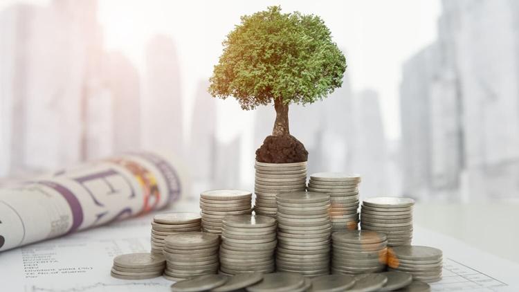 Отзывы об инвестициях в Сбербанке